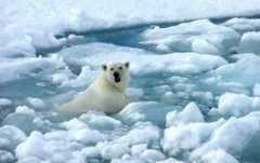 Cause dei cambiamenti climatici